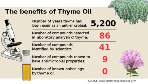 The benefits of Thyme Oil